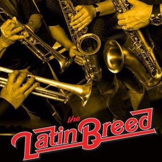Latin Breed